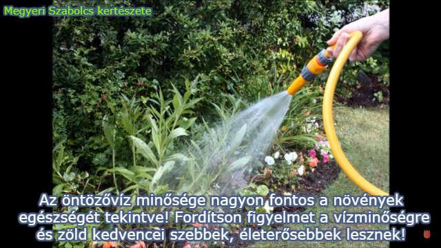 Megyeri Szabolcs kertészeti webáruháza