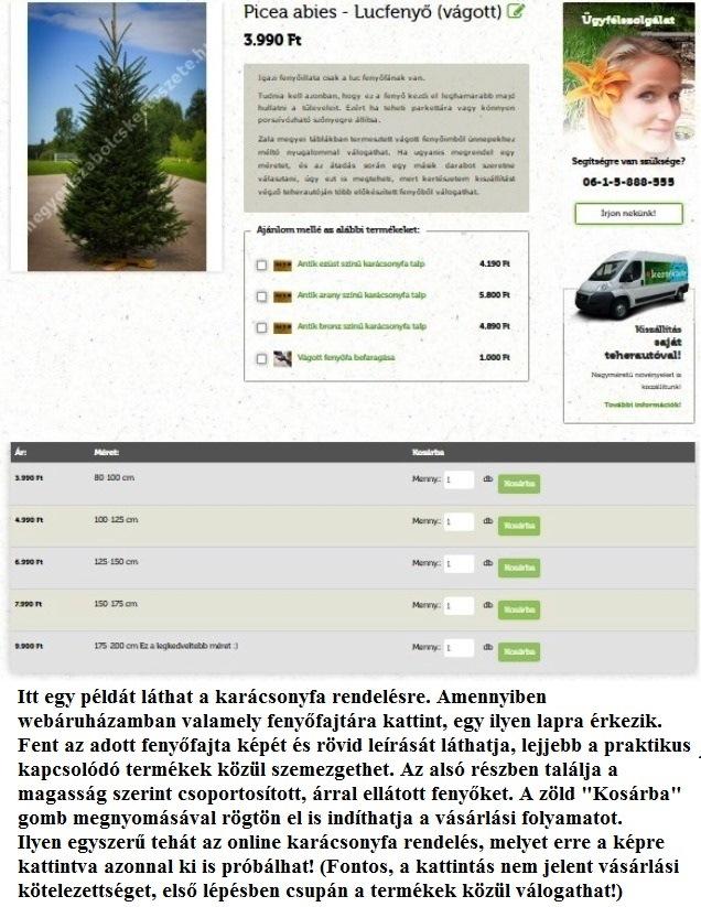 karácsonyfa rendelés online