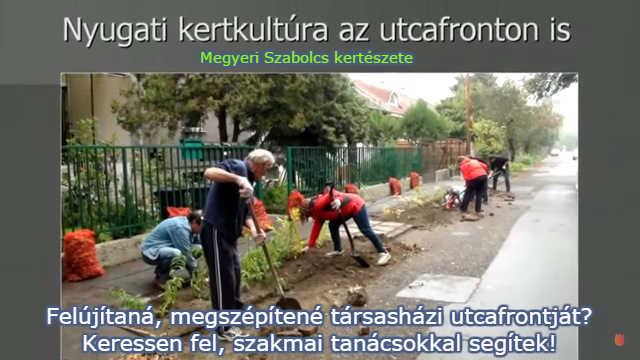 társasházi kertépítés szakvélemény