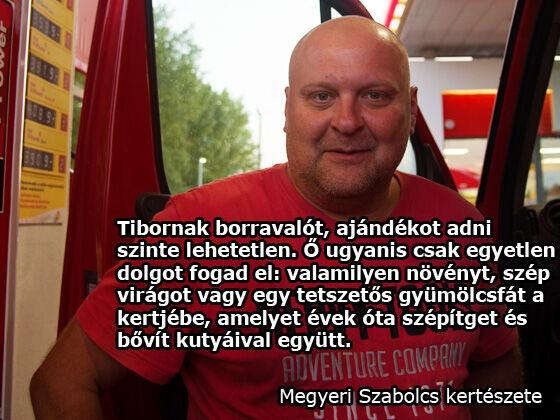Sütő Tibor