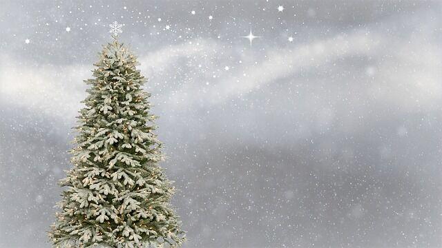 Karácsonyfa ünneplőbe öltözve