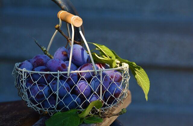 Szilva gyümölcskosár