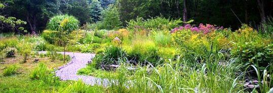 Természetközeli kertstílus jellemzői