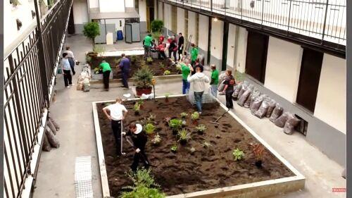 Társasházi kertépítés és kertfenntartás