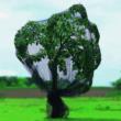 PE szőtt madárháló - PRONET (zöld)