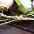 Raffia kötöző - RAPHIA – 50 g (natúr)