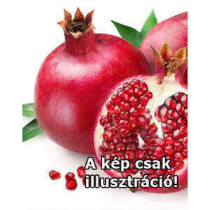 Punica granatum 'Üzbég' – Gránátalma (termő)