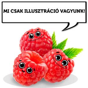 Rubus idaeus - Tüske nélküli málna