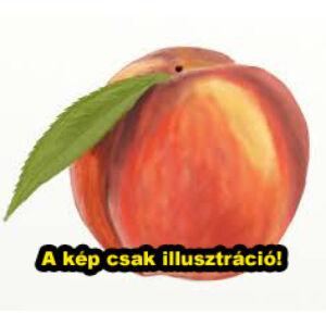 'Roter Weinsberger' vörösbelű őszibarack