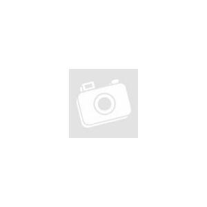 Rhododendron 'Ponticum Variegata' – Örökzöld havasszépe (rózsaszín)