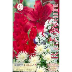 Piros-fehér (piros és fehér virághagyma kollekció)