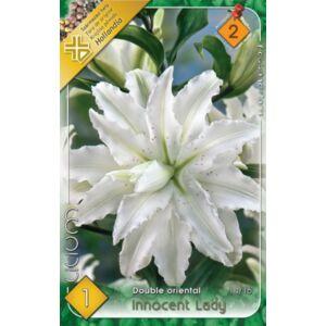Lilium 'Innocent Lady' - Teltvirágú orientál liliom (fehér)