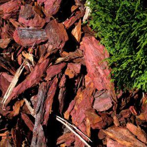 Vörösfenyő kéreg nagy szemű (2-10 cm)
