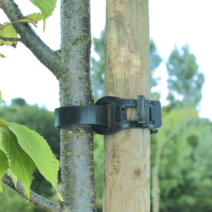 Fatörzskötöző - TREE TIE (fekete)