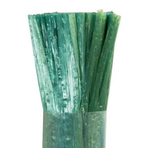 Szintetikus raffia kötöző - RAPHIA SYNTHETIC (zöld)