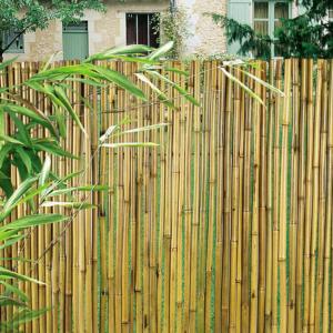 Bambuszkerítés D15 mm - BAMBOOFLEX (bambusz)