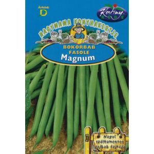 Zöldhüvelyű bokorbab 'Magnum' – Vetőmag