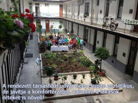 Mol Zöldövezet program
