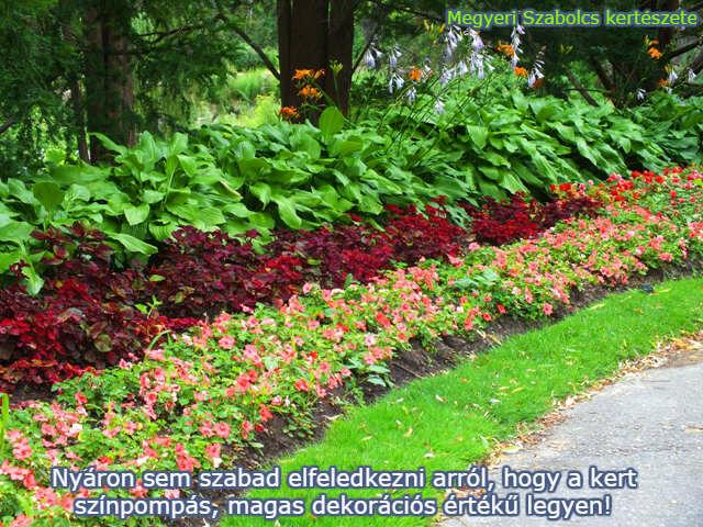 virágok vásárlása a Megyeri kertészetben