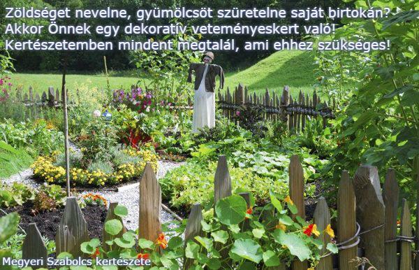 veteményeskert Megyeri Szabolcs kertészete